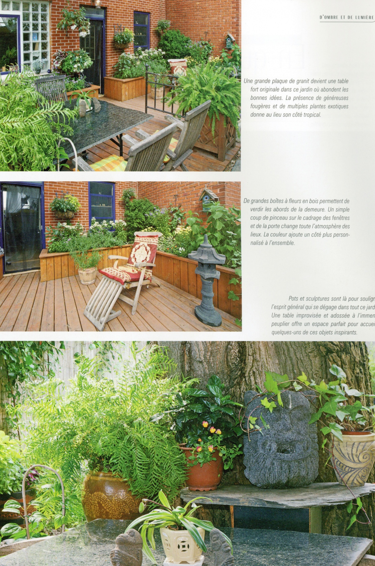 Exotique archives les jardins anim s inc for Jardin anime