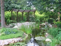 jardin d'eau mature et magnifique