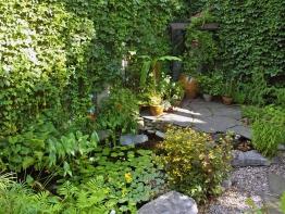 étang et mur végétal
