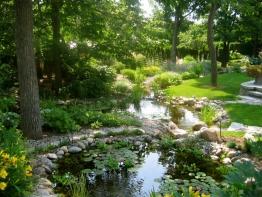 jardin d'eau magnifique