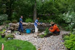 nettoyage étang au printemps