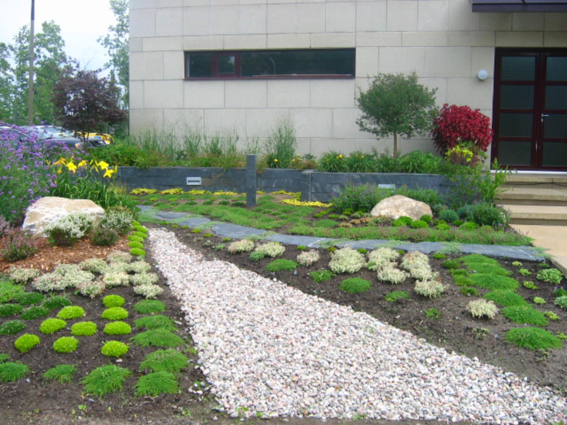 la plantation mosaique de couvre-sol