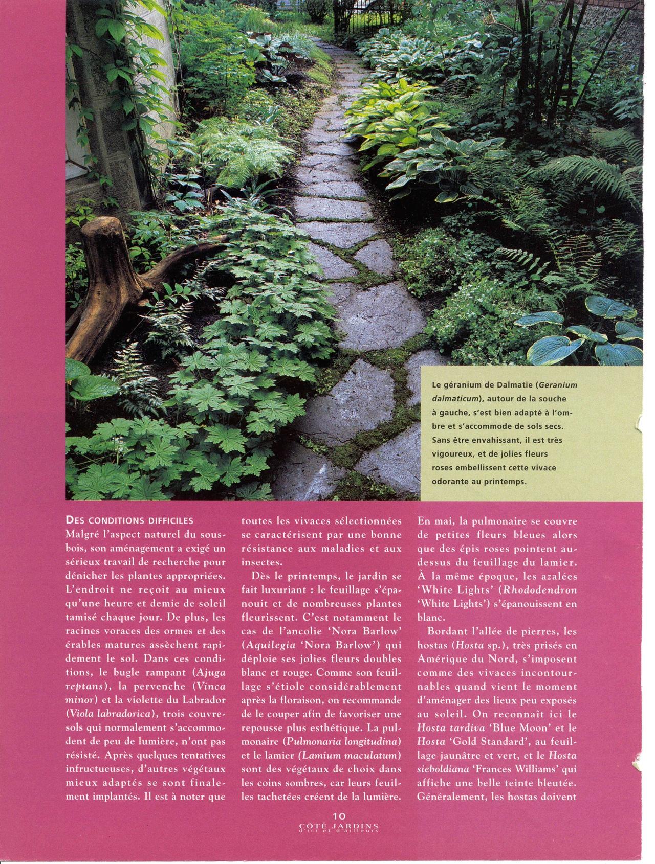 Allée verdoyante, Coté Jardins no 3, automne 1998